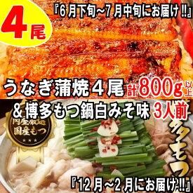 【ふるさと納税】B152.うなぎの蒲焼4尾&博多もつ鍋白みそ味(3人前)【スタミナ満点セット】