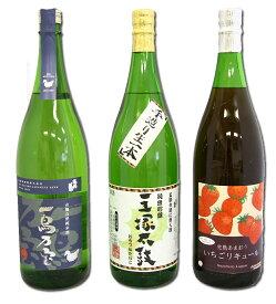 【ふるさと納税】地酒セット(大・3本組)