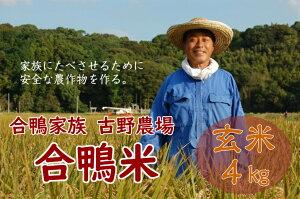 【ふるさと納税】古野農場の合鴨農法で作った無農薬米「合鴨米・玄米4kg」令和2年 2020年 福岡県産 米