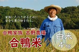 【ふるさと納税】古野農場の合鴨農法で作った無農薬米「合鴨米・白米4kg」令和2年 福岡県産 米