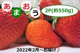 【ふるさと納税】福岡県産「あまおう」2P ~2022年2月からお届け~【先行予約】