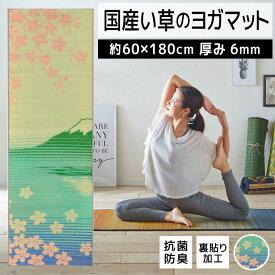 【ふるさと納税】畳ヨガJAPAN SAKURA富士(60×180) 02-AJ-0108r