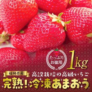 【ふるさと納税】 冷凍いちご(あまおう)1kg