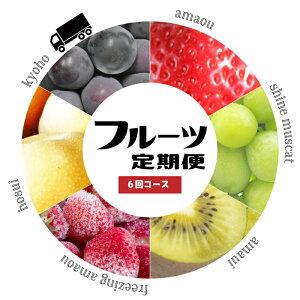 【ふるさと納税】あまおう 梨 シャインマスカット など 季節のフルーツ を 年6回 ( 果物の秋 中心に ) お届け します! 【 定期便 】