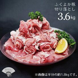 【ふるさと納税】 福岡 ブランド 直送 ふくよか豚切り落とし3,600g 送料無料