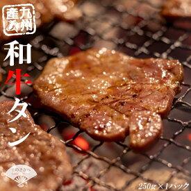 【ふるさと納税】牛若丸 九州産 和牛 タン 自家製タレ付セット 250g 送料込