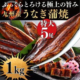 【ふるさと納税】極みうなぎ蒲焼5尾(老舗割烹秘伝タレ)