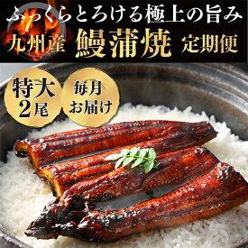 【ふるさと納税】極みうなぎ蒲焼定期便(毎月・年12回)