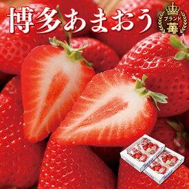 【ふるさと納税】F17-02 アルギット農業「あまおう苺」(4パック)