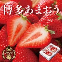 【ふるさと納税】アルギット農業「あまおう苺」(2パック)