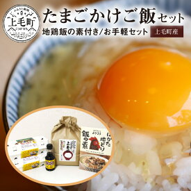 【ふるさと納税】C00501 地鶏飯の素付き「たまごかけご飯セット」(お手軽セット)