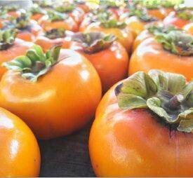 【ふるさと納税】T03401 旬の味覚「大平柿」6kg