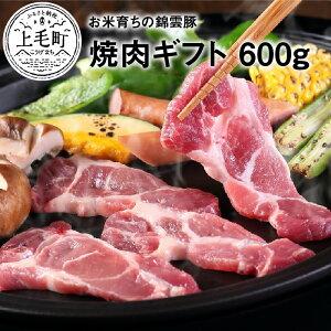 【ふるさと納税】FN0201 お米育ちの錦雲豚 焼肉ギフト 600g(ロース300g・バラ300g)