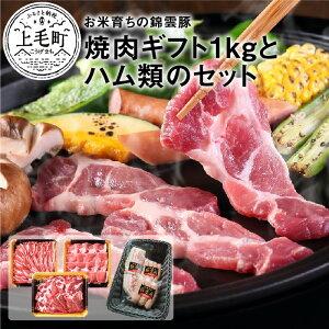 【ふるさと納税】FN0401 お米育ちの錦雲豚ギフト(焼肉用1kg)とハム類のセット