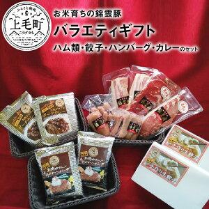 【ふるさと納税】FN0601 お米育ちの錦雲豚バラエティギフト(ハム類・餃子・ハンバーグ・カレーのセット)