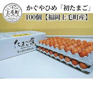 【ふるさと納税】C00901 かぐやひめ「初たまご」100個【福岡上毛町産】