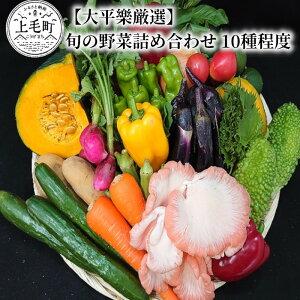 【ふるさと納税】T04102 【大平樂厳選】旬の野菜詰め合わせ 10種程度