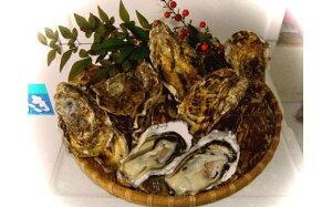【ふるさと納税】10-01 ブランド牡蠣「豊前海一粒かき(しいだ小粒がき)」(3kg)