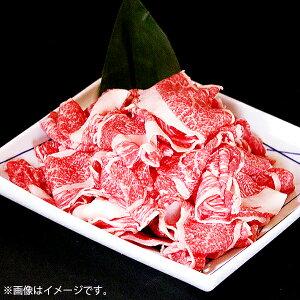 【ふるさと納税】E−009.佐賀牛切り落とし 1kg (500g×2)