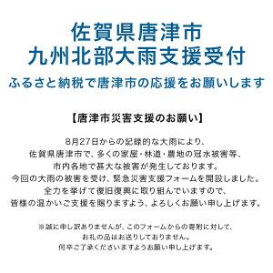 【佐賀県唐津市】令和元年8月大雨災害復興支援に伴う緊急寄附受付フォーム
