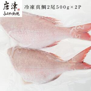 【ふるさと納税】 冷凍真鯛2尾500g×2P 【楽天】