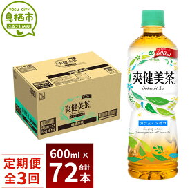 【ふるさと納税】19_5-01 3ヵ月定期便 爽健美茶 600mlPET 1ケース