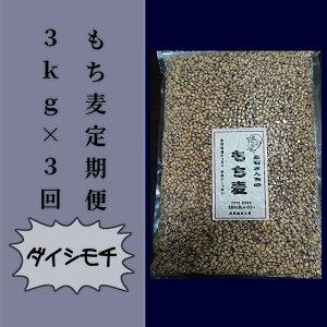 【ふるさと納税】d−43 永石さんちのもち麦(ダイシモチ)定期便 3kg×3回