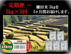 【ふるさと納税】k−3【令和2年産米 定期便】玄米 しょうちゃんの棚田米 特A夢しずく【無農薬米・化学肥料不使用】