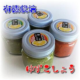 【ふるさと納税】a−10銀座有名店使用の有機栽培柚子胡椒(ゆずこしょう)A