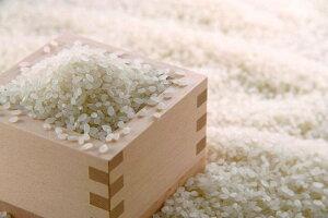 【ふるさと納税】B174伊万里の米「ヒノヒカリ」5kg