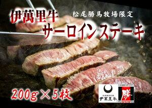【ふるさと納税】J312伊萬里牛サーロインステーキ5枚(約1.0kg)ソース2種付き