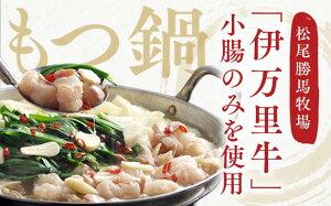 【ふるさと納税】J202伊万里牛もつ鍋セット(ホルモン200g×3・スープ・麺・薬味・みそ牛ホルモン付き)