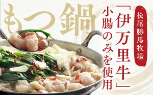 【ふるさと納税】J218伊万里牛もつ鍋セット(ホルモン200g×2・スープ・麺・薬味付き)