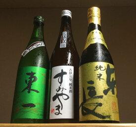 【ふるさと納税】D171「The SAGA認定酒」東一・東長・すみやま・純米酒3本セット