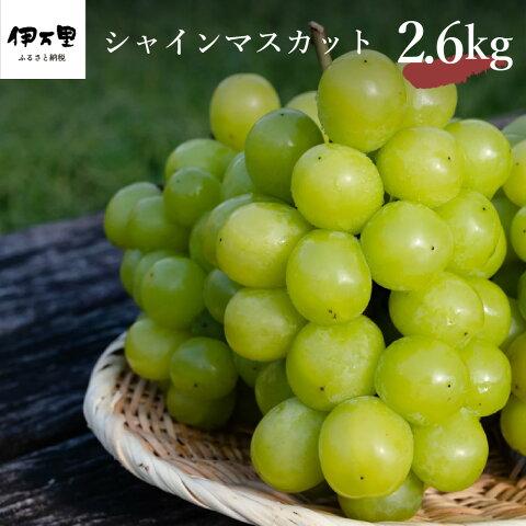 【ふるさと納税】シャインマスカット 約2.6kg (約1....