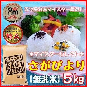 【ふるさと納税】B170【無洗米】さがびより5kg《マイスターセレクト》