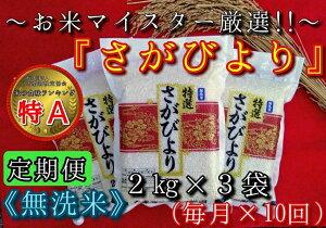 【ふるさと納税】B155【定期便】無洗米『さがびより』2kg×3袋 毎月×10回