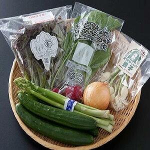 【ふるさと納税】TKA9-R002 野菜ソムリエセレクト旬の野菜果物セット1〜2人用