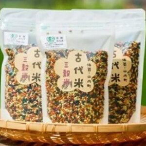 【ふるさと納税】TKA9-R009 【黒・赤・緑のちから】 有機三穀米