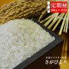 【ふるさと納税】J-3【特A】《6ヶ月定期便》佐賀県産さがびより白米(毎月10kg×6回)
