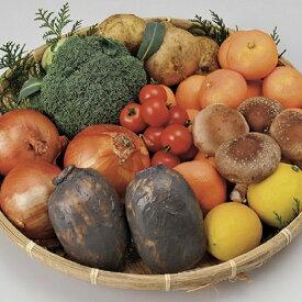 【ふるさと納税】F-20 【6ヶ月お届け】肥前の国のお野菜定期便(定番お野菜8品目程度、季節ごとのお野菜2品目程度)