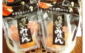 【ふるさと納税】B-125 オーガニック冷凍みかんセット