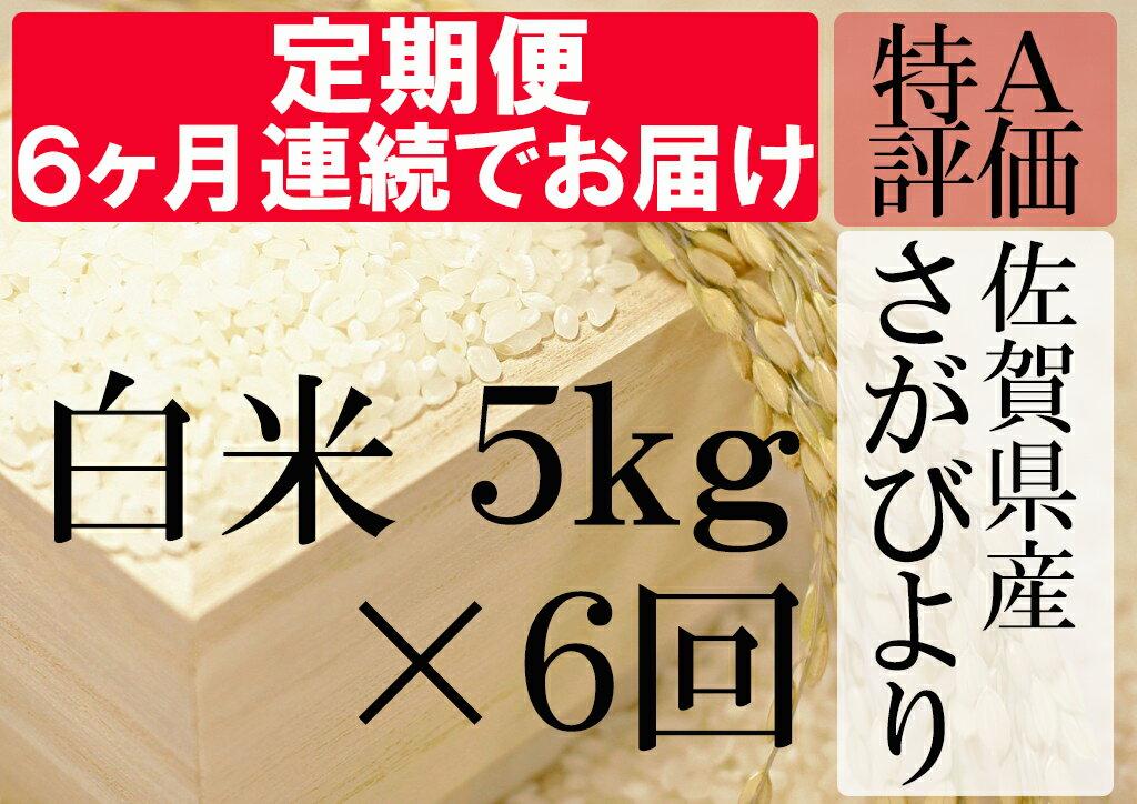 【ふるさと納税】G-4 《6ヶ月毎月お届け》佐賀県産さがびより 白米5kg定期便