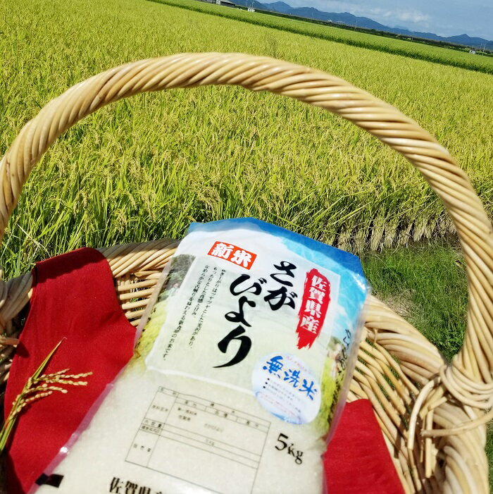 【ふるさと納税】 B-173 平成30年産 佐賀県産さがびより 10kg【無洗米】