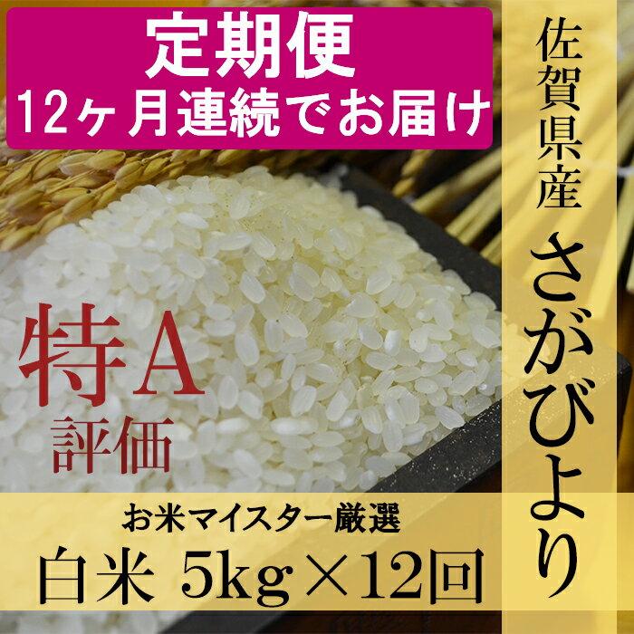 【ふるさと納税】L-21 《12ヶ月毎月お届け》佐賀県産さがびより 白米5kg定期便