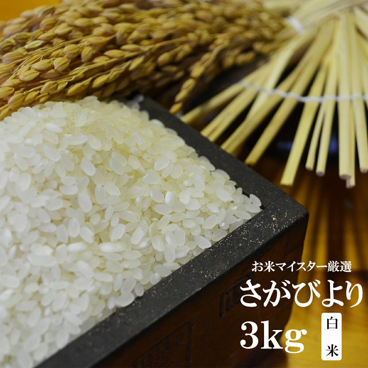 【ふるさと納税】A-20 【30年産新米】【特A】佐賀県産厳選さがびより 白米3kg