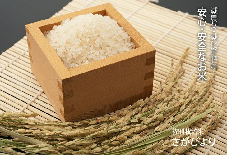 【ふるさと納税】D-10 特A評価!特別栽培米さがびより 27kg(白米)