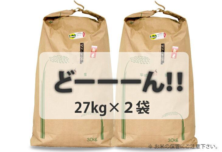 【ふるさと納税】 大家族応援!さがびより(54kg)27kg×2袋(白米)