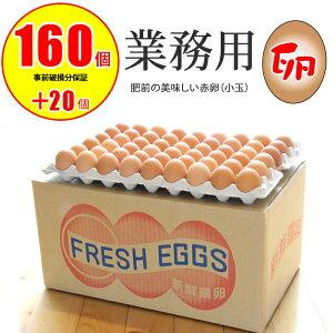【ふるさと納税】業務用卵(160個+破損保証卵20個入り)ダンボール送り 送料無料