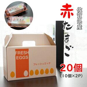 【ふるさと納税】フレッシュエッグ赤たまご20個パック(10個入り×2)送料無料
